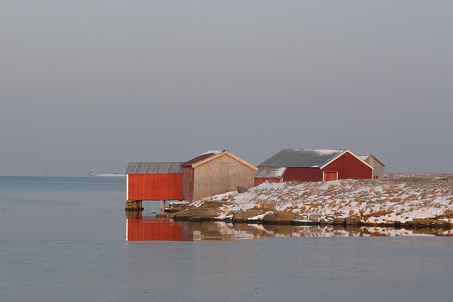 Seahouses at Ness, Vega.jpg